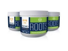 Remo Roots